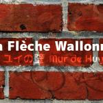 フレーシュ・ワロンヌ2019(La Flèche Wallonne)、ユイの壁を制したのは?